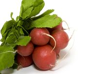 Free Bunch Of Radish Stock Photos - 6916563
