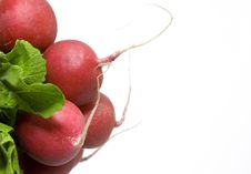 Free Bunch Of Radish Royalty Free Stock Image - 6916566