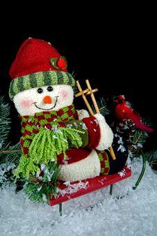 Free Christmas Joy Stock Photo - 6916990