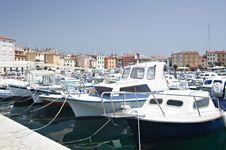 Free Marina In Rovinj Royalty Free Stock Photography - 6917097