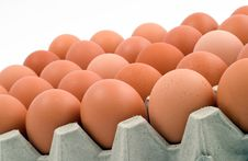 Free Closeup Of Chicken Eggs Royalty Free Stock Photography - 6917547