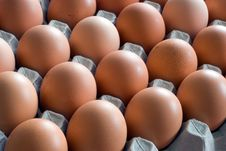 Free Closeup Of Chicken Eggs Royalty Free Stock Photo - 6917595