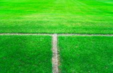 Free Green Soccer Field Stock Photography - 6918702