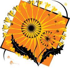 Free Dandelions Stock Images - 6920274