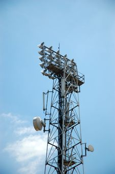 Free Telecommunication Tower Royalty Free Stock Photo - 6920865