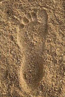 Free Footprint In The Sand Royalty Free Stock Photos - 6922328