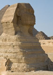 Free The Sphinx In Giza Stock Photo - 6922500