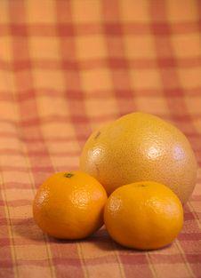 Free Orange Fruits Royalty Free Stock Images - 6924329