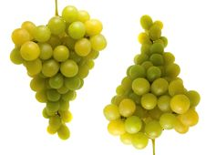 Free Two Bunches Of Fresh Grapes Stock Photos - 6924953