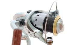 Free Spinning Reel Stock Images - 6926604