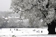 Free Snowy Winters Scene Stock Photography - 6927402