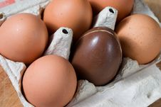 Free Easter Egg Stock Images - 6928824