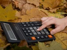 The Calculator On Leaves Stock Images