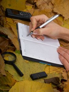Free Office On Leaves Stock Photos - 6929883