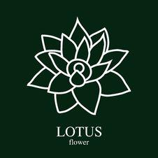 Free Lotus Flower Stock Image - 69237011