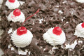 Free Black Forest Stock Photos - 6932873