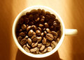 Free Cup Full Of Coffee Beans Stock Images - 6938854