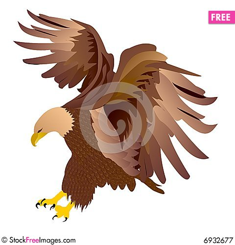 Free Eagle Vector Royalty Free Stock Photography - 6932677