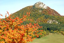 Autumn Narure Royalty Free Stock Photos