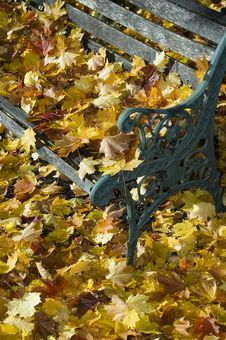 Free Bench Covered In Leafs Stock Photography - 6931302