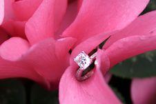 Free Symbol Of Love Royalty Free Stock Image - 6931656