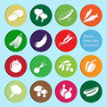 Free Vector Collection: Vegetable Icons Stock Photo - 69421900