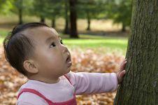 Free Smiling Baby Near Tree Stock Photography - 6955432