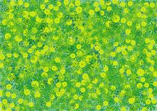 Free Green Floral Background Stock Image - 69655351