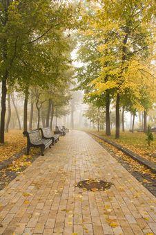 Free Autumn Park Stock Image - 6987361