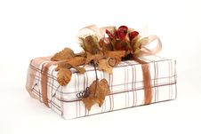 Free Christmas Present Royalty Free Stock Image - 6988906