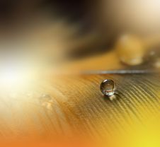 Artistic Orange Background And Colorful Waterdrop.Beautiful Macro Photography.Abstract Art.Colorful Background.Creative Web Design Stock Images