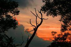 Free Sunset Stock Photography - 72352