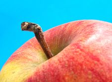 Free Braeburn Apple Stock Photos - 74683
