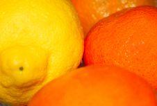 Free Lemon And Oranges Stock Image - 78521