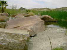 Free Rocks And Marshland Royalty Free Stock Photography - 703057
