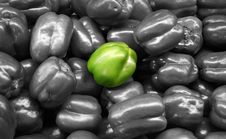Free Vegetable - Green Bell Pepper Isolated Royalty Free Stock Photo - 703465