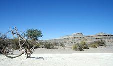Dry Desert Stock Photo