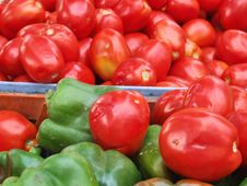 Free Tomatoes Royalty Free Stock Images - 707339