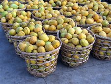 Free Mangoes Baskets Stock Photos - 708023