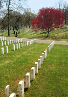 Free Arlington National Cemetery Royalty Free Stock Photos - 709928