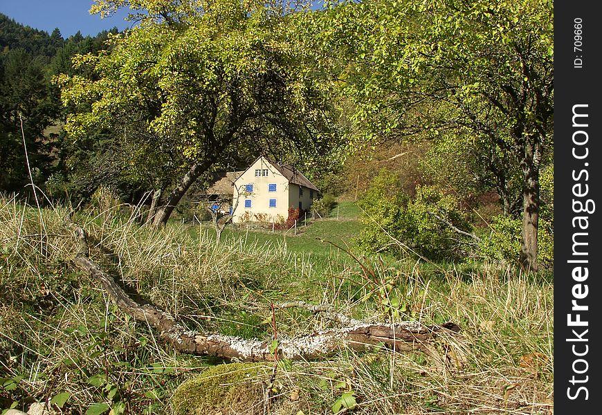 Alsacian vineyards house