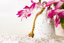 Free White Bell With Christmas Cactus Stock Photos - 7005683