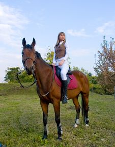 Free Pretty Young Woman And Horse. Royalty Free Stock Photos - 7006358