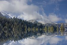 Free Winter Stock Photos - 7007693