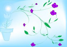 Free Flower Background Stock Images - 7009584