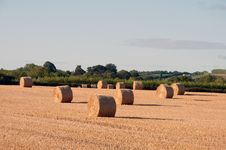 Free Bales Of Straw. Stock Images - 70044054