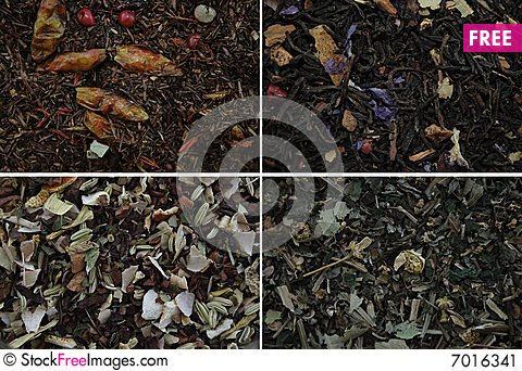 4 diferent herbs Stock Photo