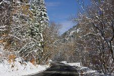 Free Winter Royalty Free Stock Image - 7011066