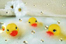Free Bubble Bath Stock Photo - 7012280
