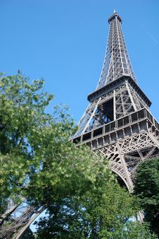 Free Paris - Eiffel Tower Royalty Free Stock Image - 7013166